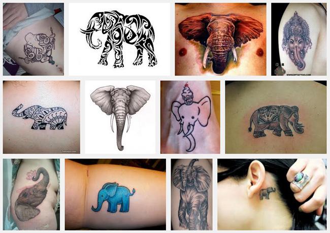 Elephant Tattoo Meanings Itattoodesigns