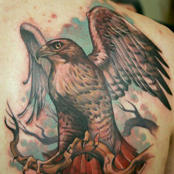 Hawk Tattoo Meanings Itattoodesigns
