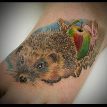 Hedgehog Tattoo Meanings | iTattooDesigns.com