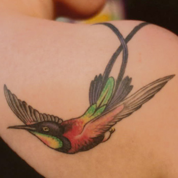 Birds Tattoo Meanings Itattoodesigns