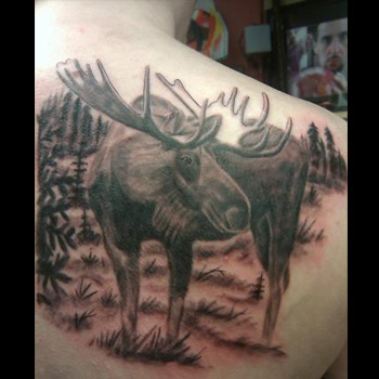 Moose Tattoo Meanings Itattoodesignscom