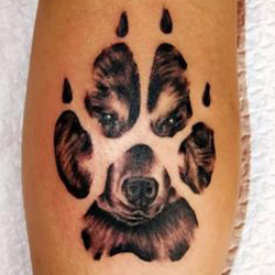 paw print tattoo meanings itattoodesigns com rh itattoodesigns com Bear Paw Tattoo Drawings Grizzly Bear Paw Print Tattoo