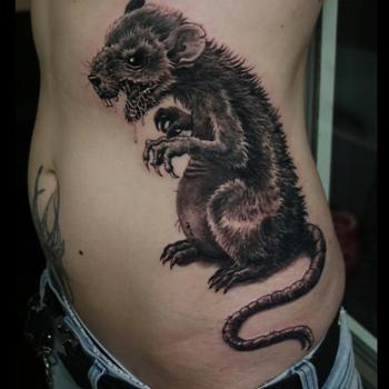 Rat Tattoo Meanings Itattoodesigns