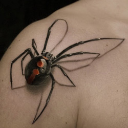 spider tattoo meanings