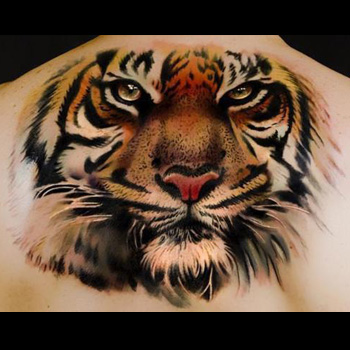 Tiger Tattoo Meanings Itattoodesigns Com