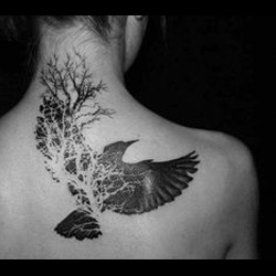 Wings tattoo meanings itattoodesigns bird wings tattoo urmus Gallery