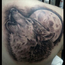 Wolf Tattoo Meanings Itattoodesigns Com