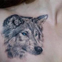 The Wolf Is Also A Symbol Of Luck And Fertility In Mongolian Tradition People Believe That They Are Descendants As Such
