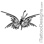 tribal butterfly design