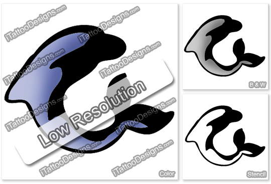 dolphin tattoo design