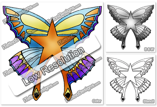 butterfly and star